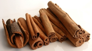 Cinnamon_Variaties_-_Robin